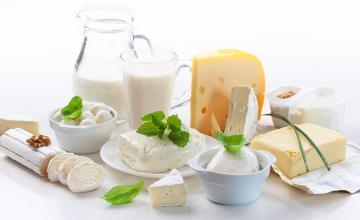 The Milky, Cheesy Truth about Dairy Products