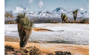 21 Pictures Of An Arizona Desert Snowstorm As A Winter Wonderland