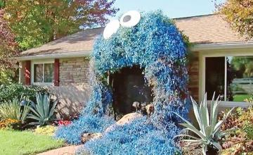 Pennsylvania woman's giant Cookie Monster front door display for trick-or-treaters goes viral
