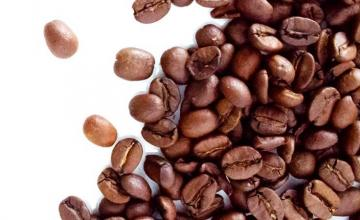 GET TO KNOW COFFEE, MORE!