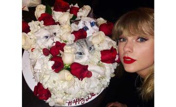 Blake Lively and Ryan Reynolds attended Taylor Swift's star-studded birthday party