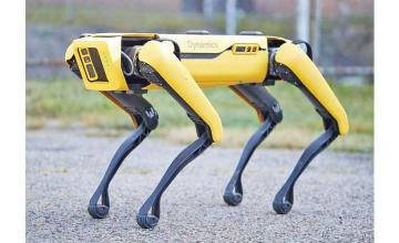 Robot-dogs enforce social distancing in Singapore