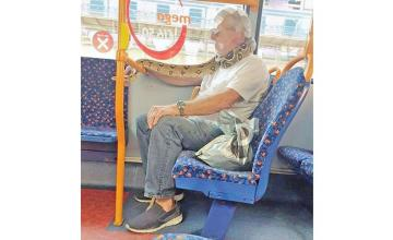Man uses live snake as mask on bus: 'No one batted an eyelid'