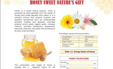 Honey: Sweet Nature's Gift