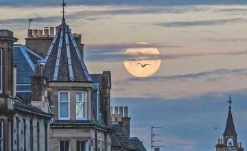 Another pink supermoon is coming! Here's when you can take in all its glory