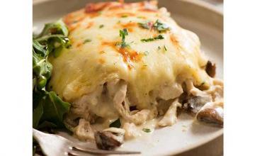 Chicken White Sauce Lasagna