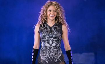 Shakira was apparently attacked by wild boars while visiting a park with her son